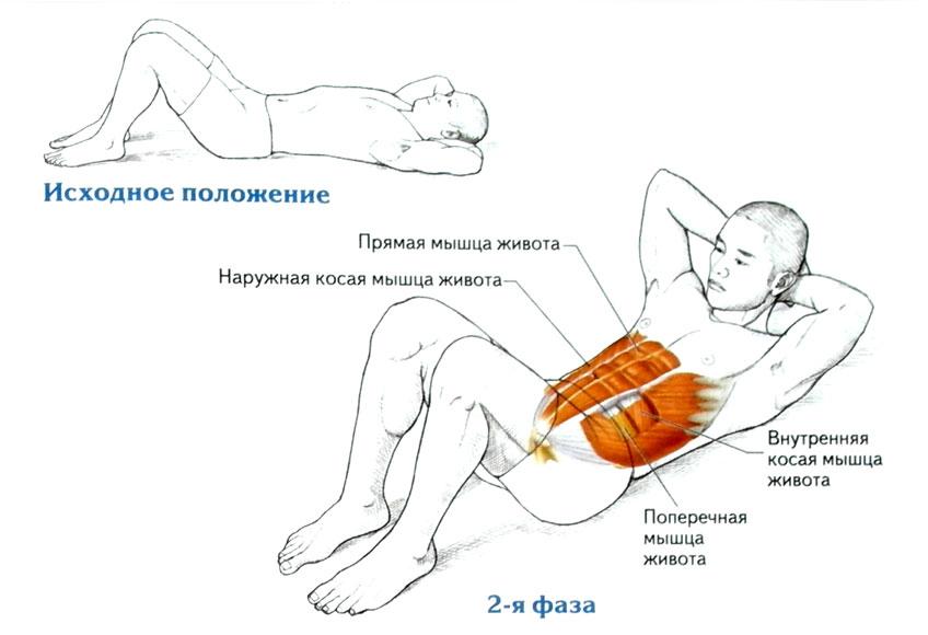 Упражнения растяжка утренняя в картинках станица разделена